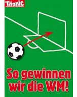 WM gewinnen